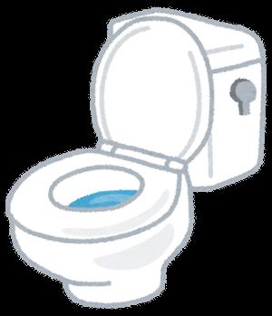 toilet-futa-1
