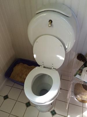 toilet-futa-2