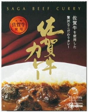 saga-omiyage-6