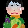 野菜嫌いな人の為に野菜の代用となりそうな食品についてまとめてみました